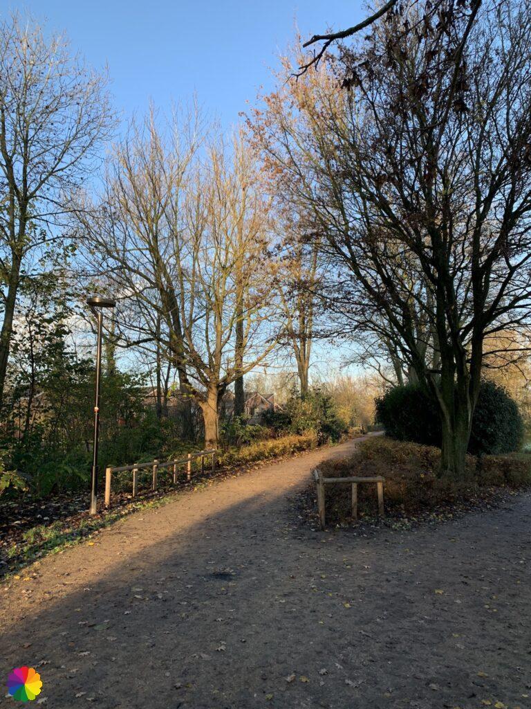 Springer park at Schoonhoven