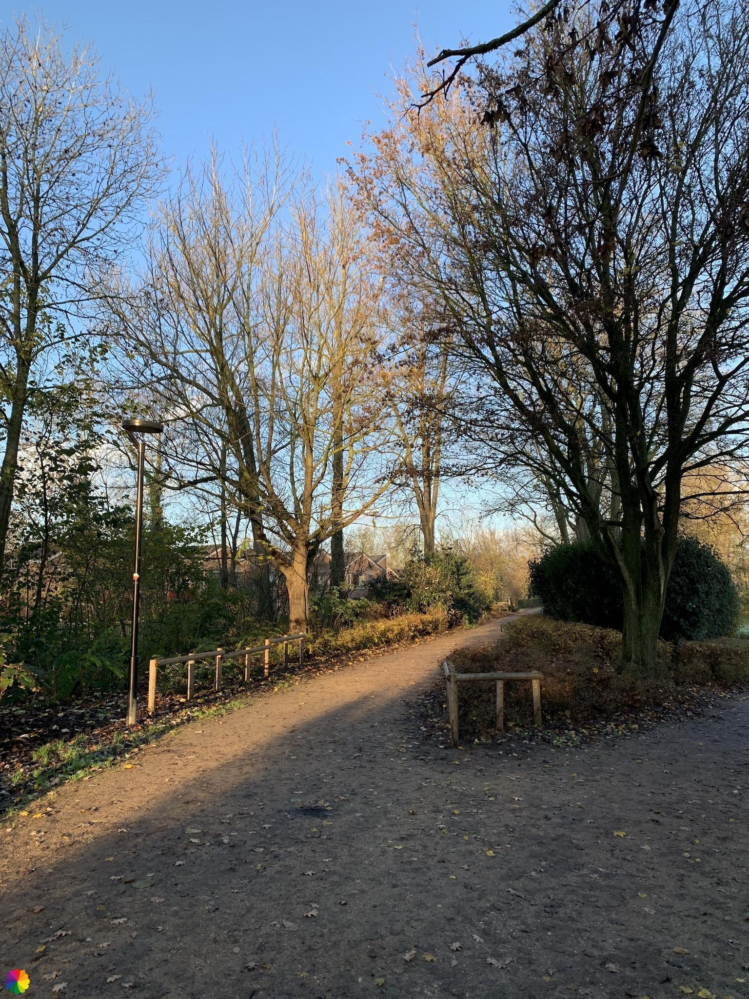 Springer park in Schoonhoven
