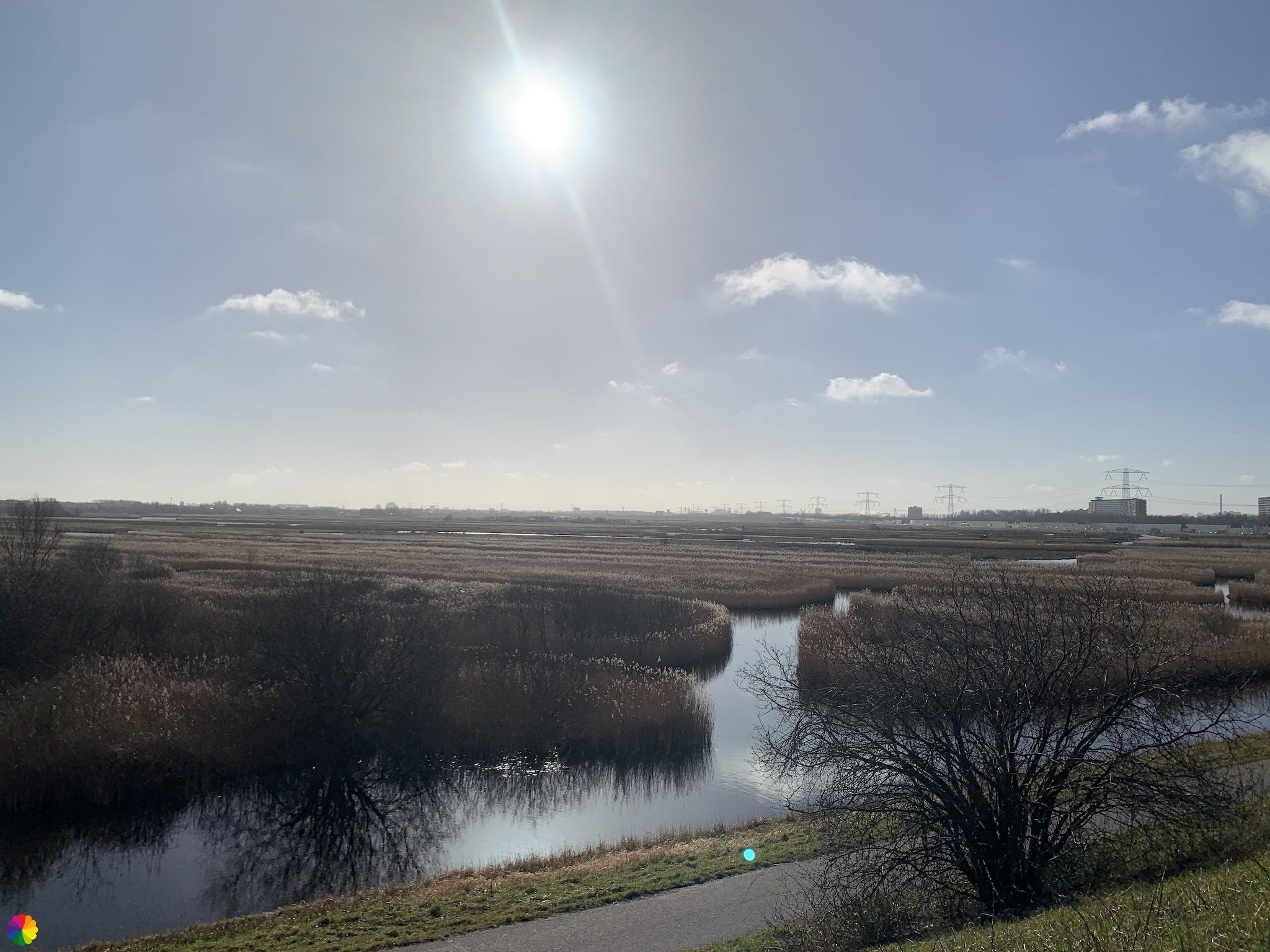 Prachtig uitzicht over het Oostzanerveld